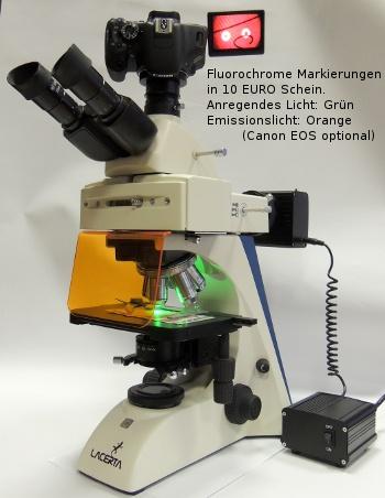 Epi-Fluorescence Upgrade für LIS