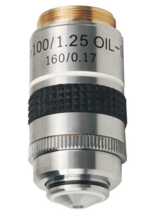 Lacerta Aplan100x-iris -Lacerta
