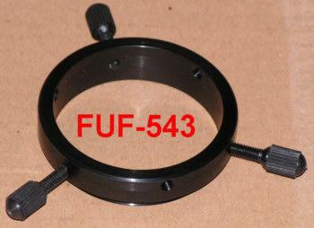 Lacerta FUF543 -Lacerta