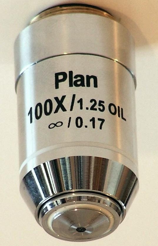 Lacerta I-plan100x -Lacerta