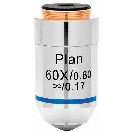 Lacerta I-plan60x -Lacerta