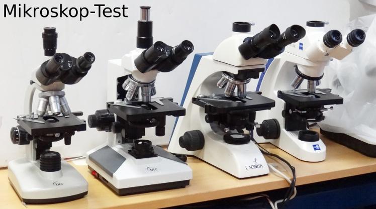 Bim lis primostar test